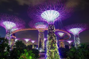 Singapore_Garden by the bay